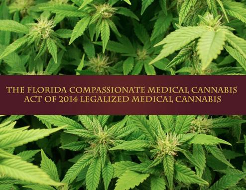 Florida Medical Marijuana Business Formation